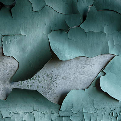 Peeling Paint Poster by Russ Dixon