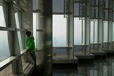 Person Viewing A City From Observation Poster by Panoramic Images