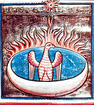 Phoenix, Legendary Creature Poster by Photo Researchers