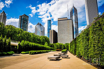Picture Of Chicago Skyline With Millennium Park Trees Poster by Paul Velgos