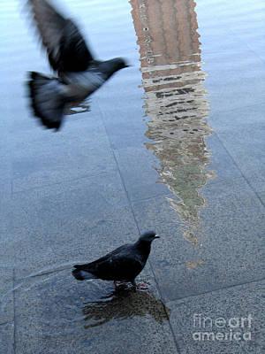 Pigeons In Piazza San Marco. Venice. Italy. Poster by Bernard Jaubert