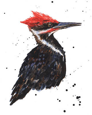 Pileated Woodpecker Watercolor Poster by Alison Fennell