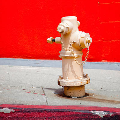 Pink Fire Hydrant Poster by Art Block Collections