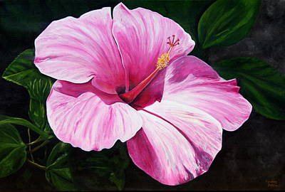 Pink Hibiscus Poster by Lyndsey Hatchwell