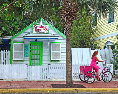 Pink Lady And The Conch Shop  Poster by Rebecca Korpita