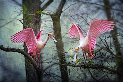 Pink Wings In The Swamp Poster by Bonnie Barry