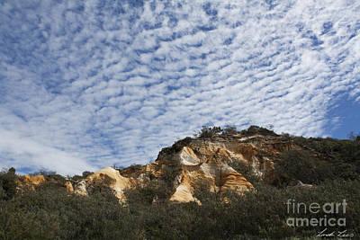 Pinnacles Of Fraser Island Poster by Linda Lees