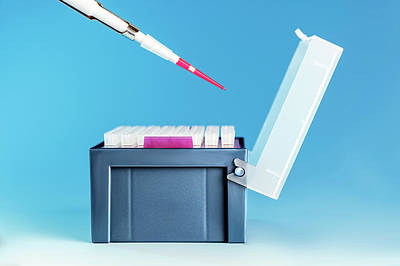 Pipette And Medical Samples In A Box Poster by Wladimir Bulgar