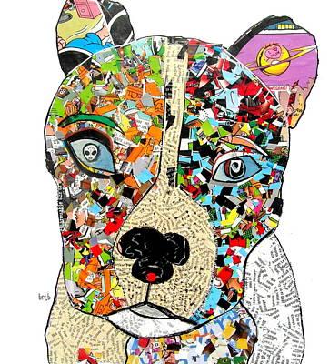 Pit Bull  Poster by Bri B
