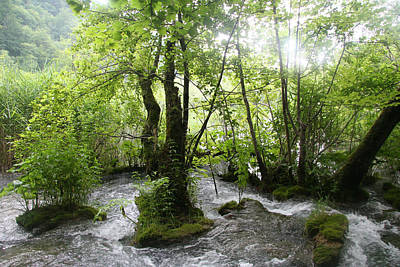 Poster featuring the photograph Plitvice Lakes by Travel Pics