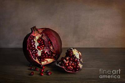 Pomegranate Poster by Elena Nosyreva