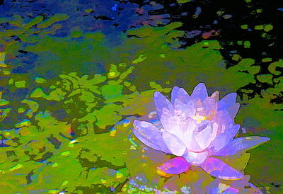 Pond Lily 29 Poster by Pamela Cooper