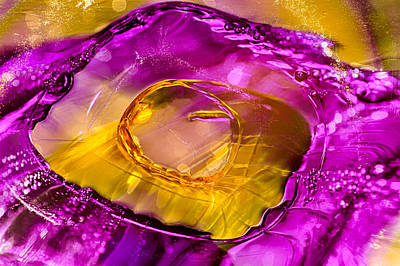 Pool Of Fuscia Poster by Omaste Witkowski