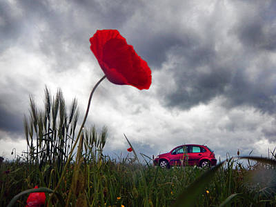 Poppy With Car Poster by Renata Vogl