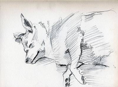 Posey Sleeping Poster by Whistler Kenworthy
