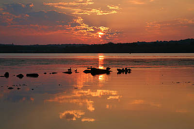 Potomac River Sunrise IIi Poster by Steven Ainsworth