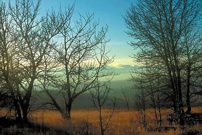 Prairie Autumn 2 Poster by Terry Reynoldson