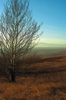 Prairie Autumn 5 Poster by Terry Reynoldson
