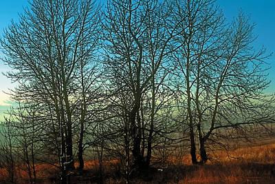 Prairie Autumn Poster by Terry Reynoldson