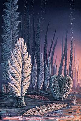 Pre-cambrian Life Forms Poster by Richard Bizley