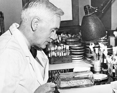 Professor Alexander Fleming Poster by Underwood Archives