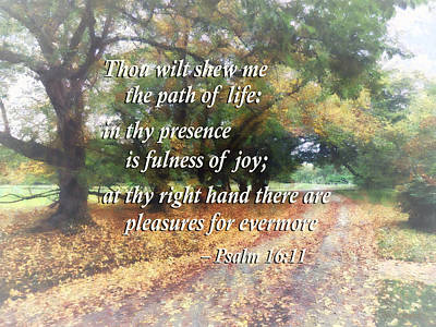 Psalm 16 11 Thou Wilt Shew Me The Path Of Life Poster by Susan Savad