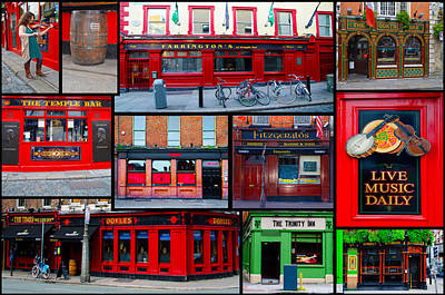 Pubs Of Dublin Poster by Bill Cannon