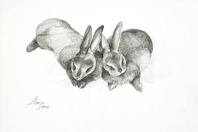 Rabbits Sleeping Poster by Jeanne Maze
