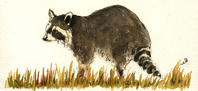 Raccoon In The Grass Poster by Juan  Bosco