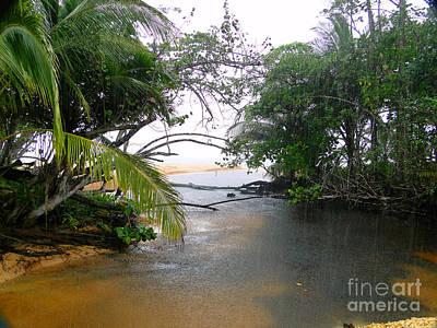 Rain In Bocas Del Toro Poster by Al Bourassa