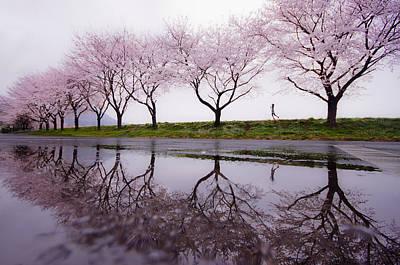 Rain Of Spring Poster by Kouji Tomihisa