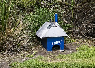 Ralph - Penguin House - Australia Poster by Steven Ralser