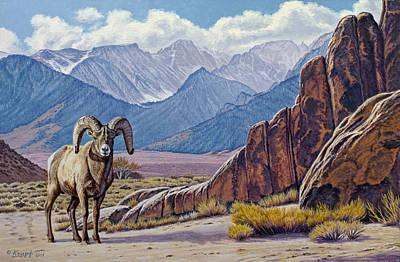 Ram-eastern Sierra Poster by Paul Krapf