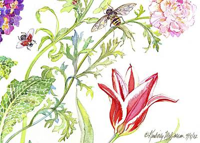 Ranuncula And Tulip Poster by Kimberly McSparran
