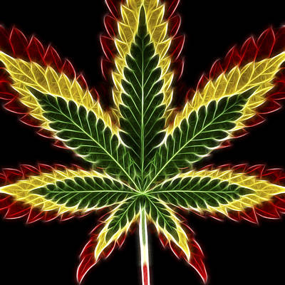Rasta Marijuana Poster by Adam Romanowicz