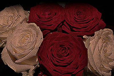 Red And White Roses Color Engraved Poster by David Dehner