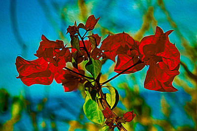 Red Bougainvillea Poster by Omaste Witkowski