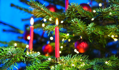 Red Candles In Christmas Tree Poster by Ulrich Schade