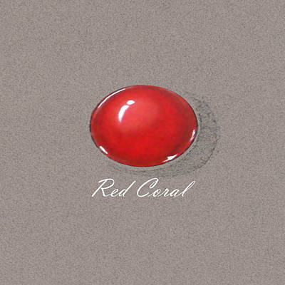 Red Coral Cabochon Poster by Marie Esther NC