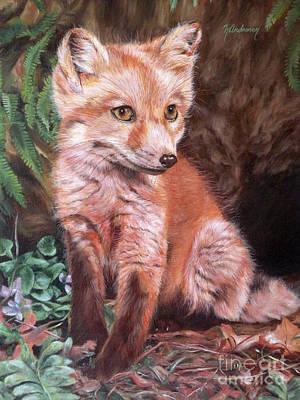 Red Fox Kit Poster by Nancy Andresen