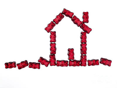 Lebensmittel Poster featuring the photograph Red Jellybabies Formed As A House by Juergen Ritterbach