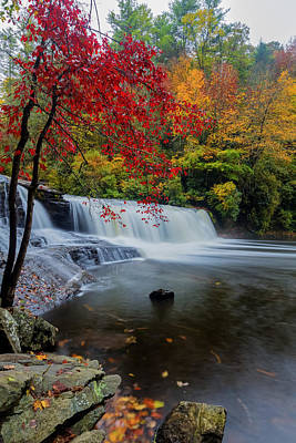 Red Leaves In Dupoint Park Hooker Falls Poster by Andres Leon