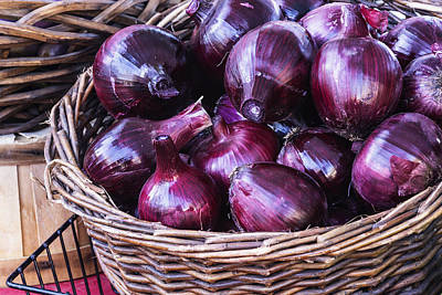 Red Onion Poster by Vishwanath Bhat