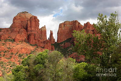 Red Rocks Of Sedona With Spring Trees Poster by Carol Groenen
