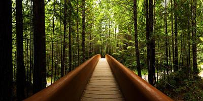 Redwood Bridge Poster by Chad Dutson