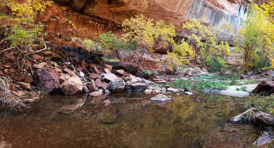 Reflecting Pond In Zion National Park Poster by Panoramic Images