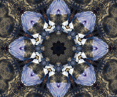Reflection  Kaleidoscope Poster by Jordan Blackstone
