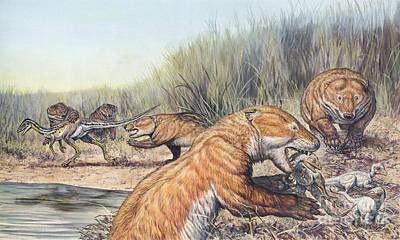 Repenomamus Mammals Hunting For Prey Poster by Mark Hallett