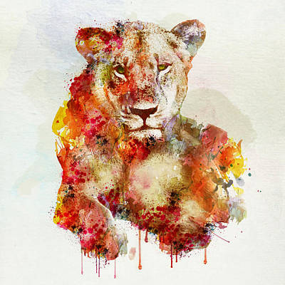 Resting Lioness In Watercolor Poster by Marian Voicu