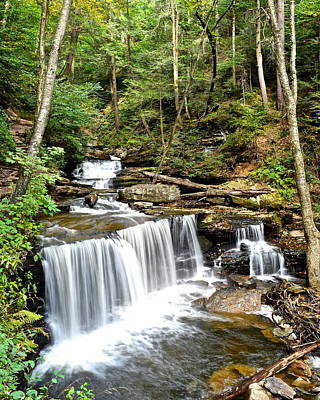Ricketts Glen Delaware Falls Poster by Frozen in Time Fine Art Photography